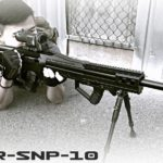sr-snp-10
