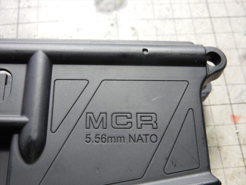 DSCN4445